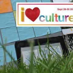 Mini Culture Days