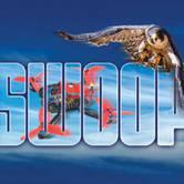 SWOOP! Drone Racing and Raptors in Flight