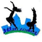 Dance Associates Austin, Inc.