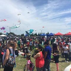 Brampton Kite Fest 2019