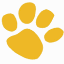 SUMMER CAMPS ( Sacramento Zoo) : YELLOW