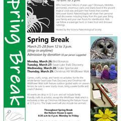 Spring Break Fossil Fair