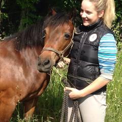 Millshaw Meadows Equestrian Centre