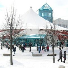 Arctic Glacier Winter Park