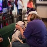 SPCA of Texas' Home for the Holidays Pet Adoption Center