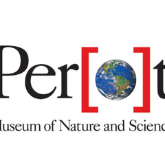 Family Experiments with the Perot Museum