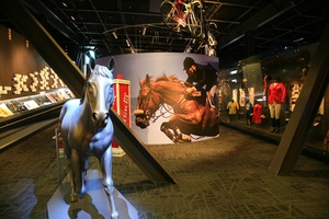 Horses in Sport Exhibit