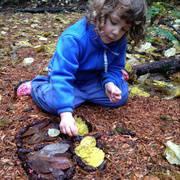 Cedarsong Nature School