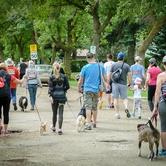 Run Walk Ride for Vision Zero