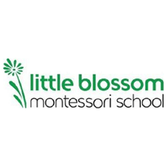 Little Blossom Montessori School - South Land Park