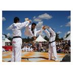 Grand Master K.H. Min Taekwondo Dojang
