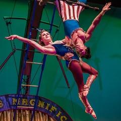 Cirque Mechanics 42FT A Menagerie of Mechanical Marvels