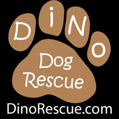 DINO Rescue Dogs In Need Organization