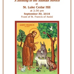 Blessing of the Animals Service at St. Luke Cedar Hill