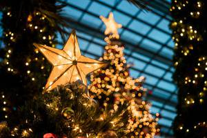 57th Annual Holiday Arts Festival