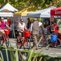 Sacramento Bicycle Festival