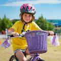 Pedalheads Bike, Swim and Sport Programs's promotion image