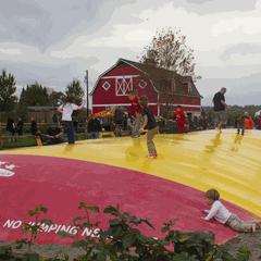 Stocker Farms Fall Festival