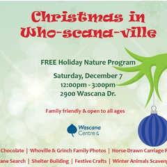 Christmas in Who-scana-ville