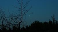 Mercer Slough Night Walk