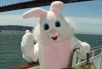 Premier Easter Brunch Cruise