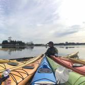 Sea Kayak Fundamentals: Paddle Canada Level 1 Sea Kayak Skills