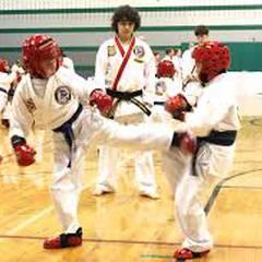 The Institute of Okinawan Karate-Do