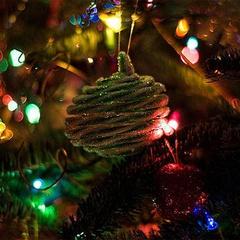 Holiday Tree Lighting & Firehouse Munch FREE!