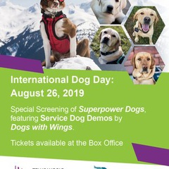 International Dog Day Special Event