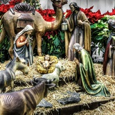 Holy Jolly Christmas Craft Show