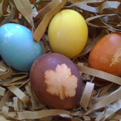 FAMILY PROGRAM: Naturally Dyed Eggs