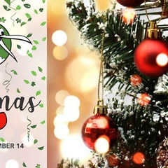 Kiwi's Christmas Grotto (Saturday)