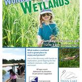 Wondrous Wetlands