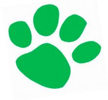 SUMMER CAMPS ( Sacramento Zoo) : GREEN