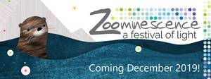 Zoominescence 2019