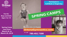 Spring Camps - Boys and Girls - Age 3 to 13 - single days or full week.