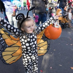 Howloween at the Zoo