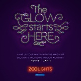 ZOOLIGHTS: The glow starts with you