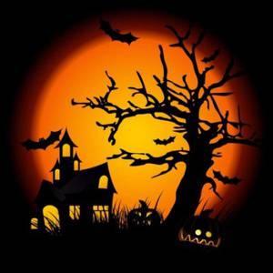 Haunted Halloween Trails