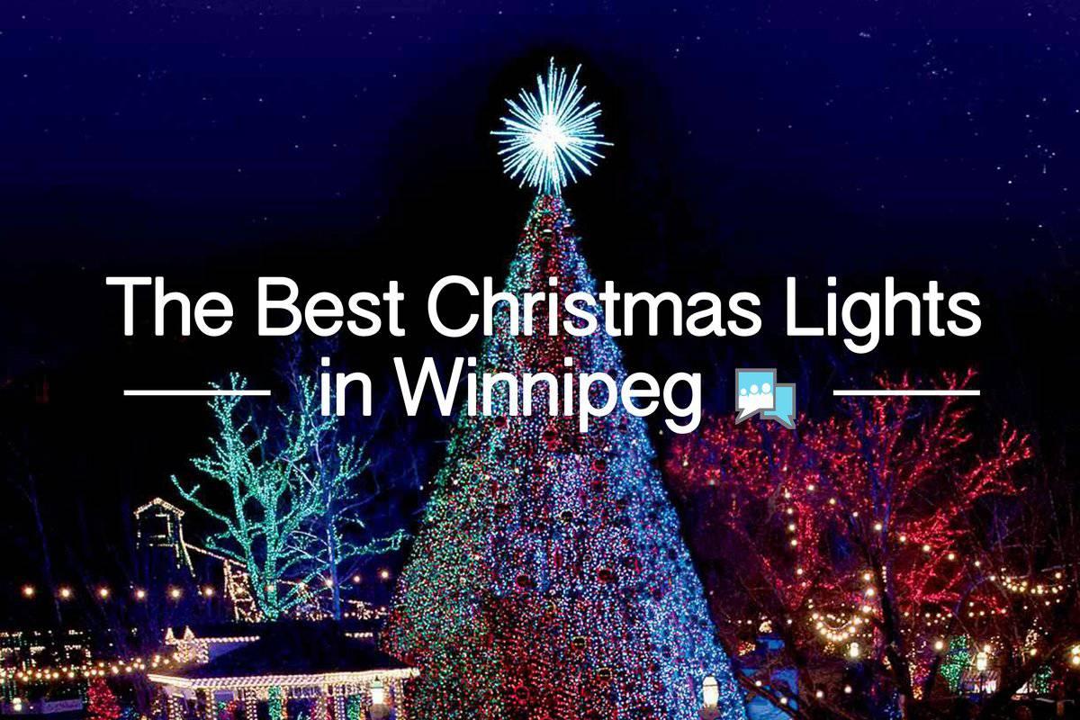best christmas lights in houston tx