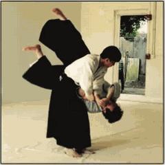 Shobu Aikido Of Boston