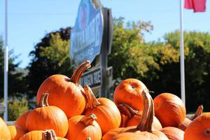 Acres of Terror @ Cannamore Orchard