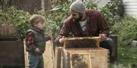 Free - Intro to Backyard Beekeeping Class