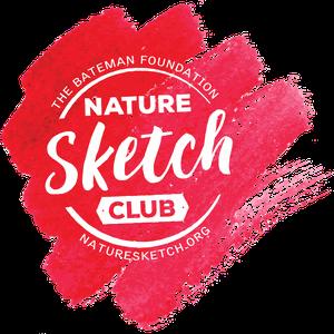 Jr NatureSketch Club