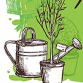 Plant Faire