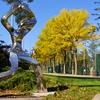 Redmond Parks and Recreation