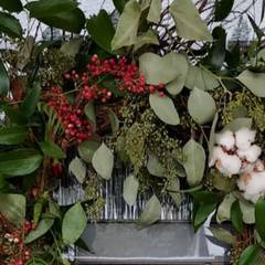Organic Holiday Wreath Making