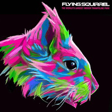 Flying Squirrel - Winnipeg's promotion image