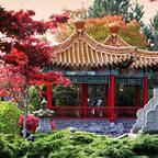International Buddhist Temple