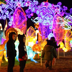 Lights of The North - Lantern Light Festival